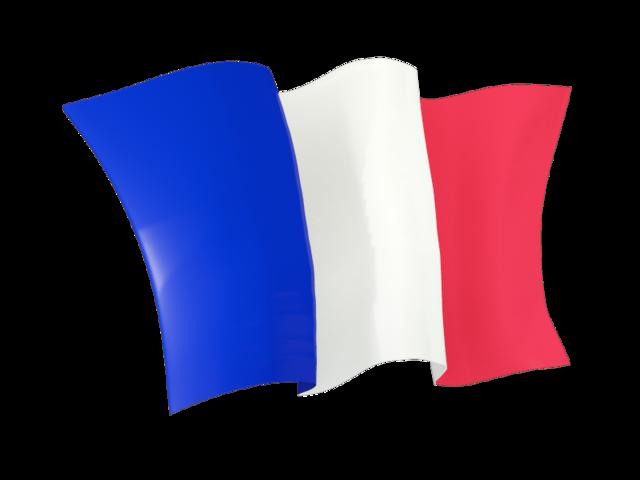 Beberapa Keterampilan Penting Yang Harus Dicari Dalam Diri Penerjemah Inggris Perancis